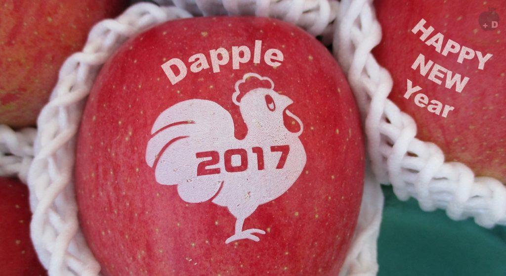愛知県名古屋市緑区にあるiPhone修理・買取・格安SIMのDapple名古屋緑店からの2017年のご挨拶